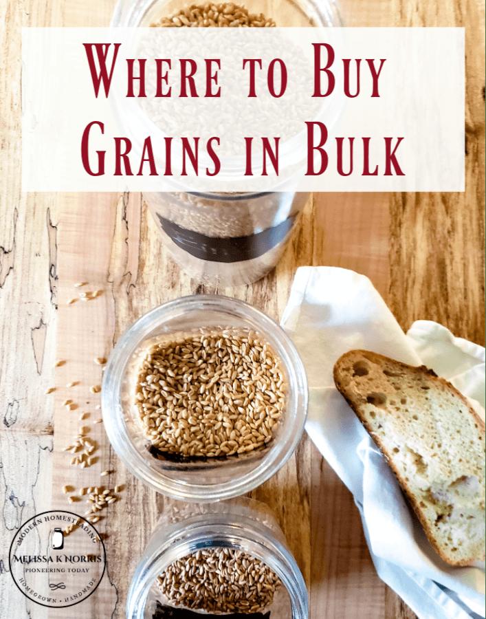 Where to Buy Grains in Bulk Wheat berries in glass jars
