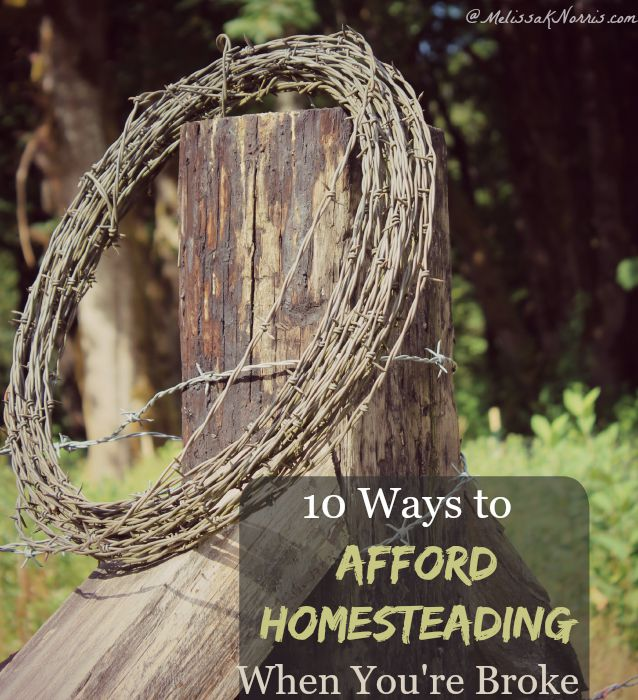 """Image of a roll of barbed wire hanging on a weathered fence post. Text overlay says, """"10 Ways to Afford Homesteading When You Are Broke""""."""