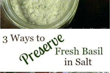 "Pinterest pin with three images. Top image is of a jar of basil salt. Bottom two images show the process of preserving basil in salt. Text overlay says, ""3 Ways to Preserve Fresh Basil in Salt""."