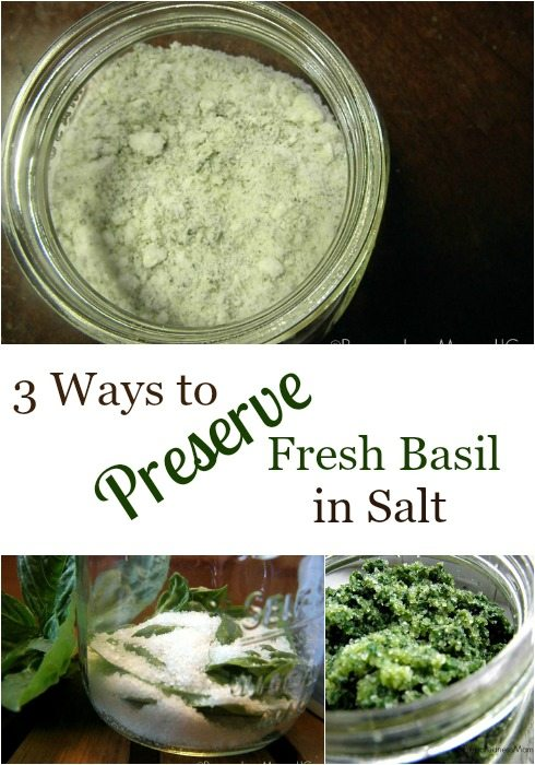 """Pinterest pin with three images. Top image is of a jar of basil salt. Bottom two images show the process of preserving basil in salt. Text overlay says, """"3 Ways to Preserve Fresh Basil in Salt""""."""