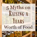 "Photo of a food pantry with text overlay, ""5 Myths on Raising A Years Worth of Food""."