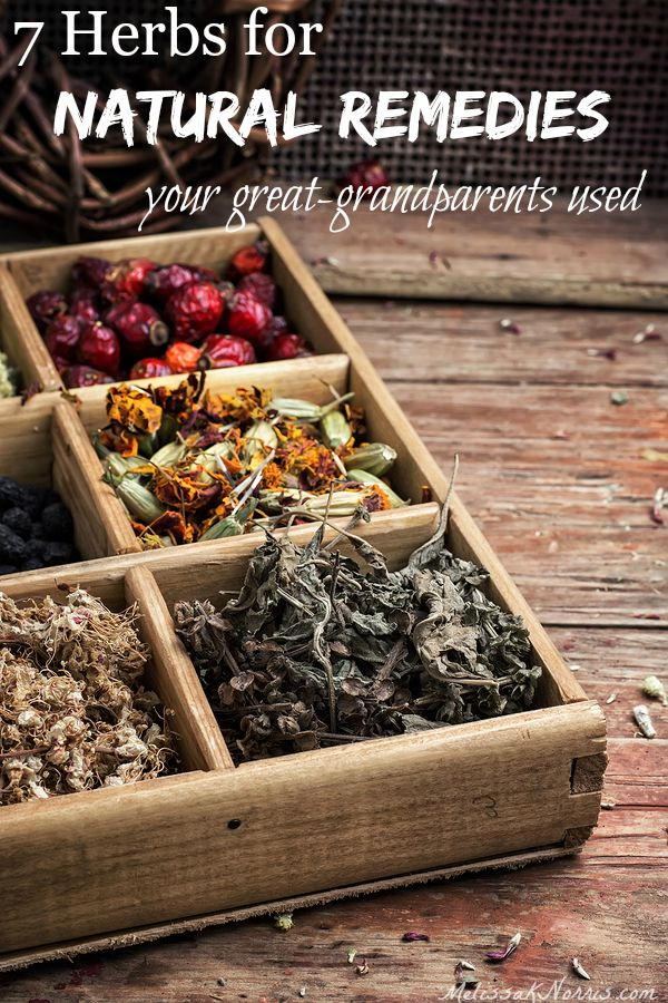 "A wooden box with dried herbs. Text overlay says, ""7 Herbs for Natural Remedies Your Great Grandparents Used""."