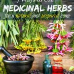 "Image of a mortar and pestle with hanging flowers and herbs to dry. Text overlay says, ""7 Ways to Use Medicinal Herbs for a Natural and Prepared Home."""