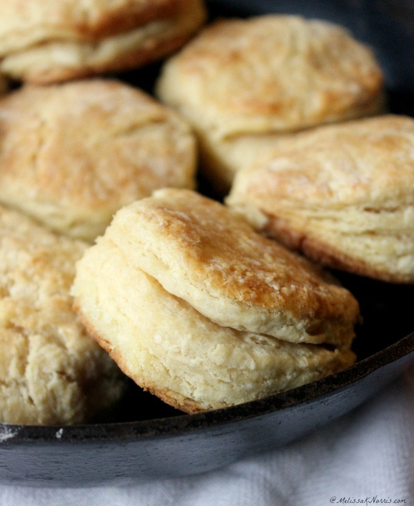 Buttermilk biscuits in a cast iron pan.