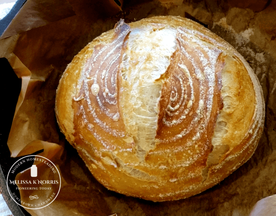artisan bread on parchment paper