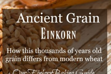 "Image of einkorn grain on an old table with text overlay, ""Ancient Grain Einkorn""."