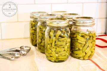 homecanned green beans in jar on counter