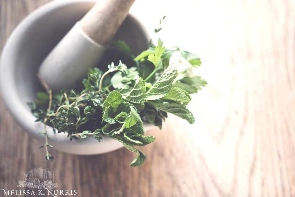 "Mortar and pestle with fresh herbs and text overlay that says, ""How I Healed My Stomach from Acid Reflux Naturally: & quit taking the prescription meds""."