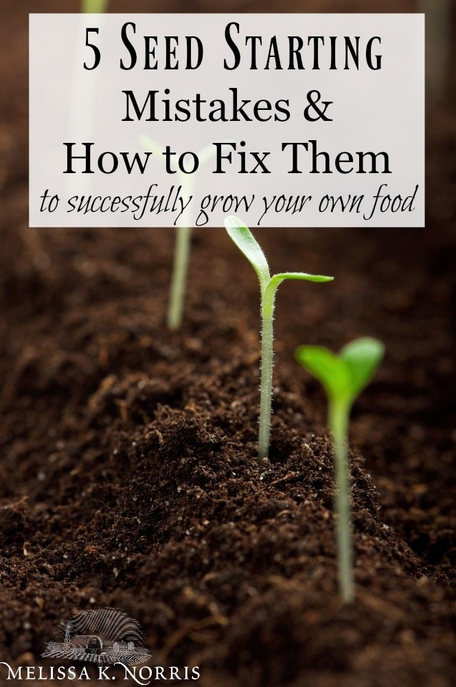 """Close up image of a garden row with seed starts beginning to pop out of the soil. Text overlay says """"The Ultimate Seed Starting Guide. Planning, Starting, and Mistakes to Avoid to Grow Your Own Food""""."""