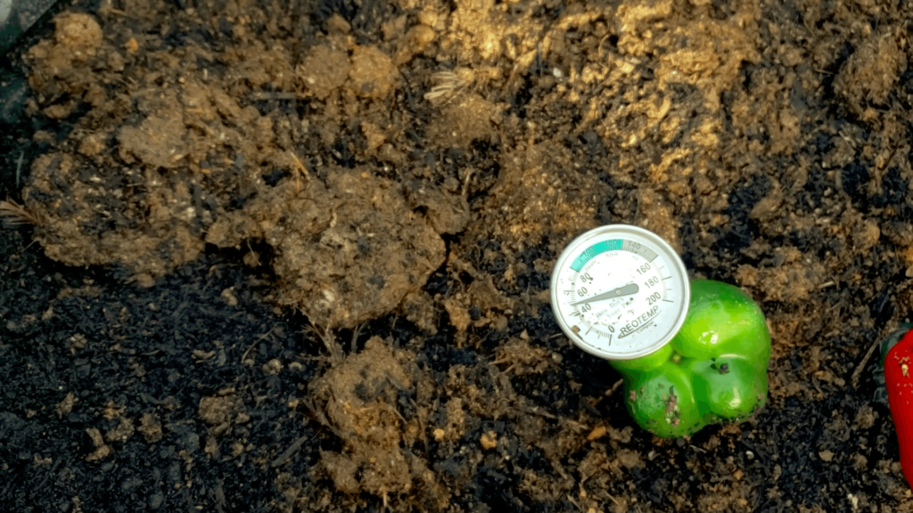 Image of a compost pile with a thermometer in it.