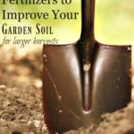 """Pinterest pin containing two images. Top image is of a close up shot of a spade shovel with freshly tilled soil in the background. Bottom image is a close up picture of newly sprouted plants. Text overlay says, """"6 Natural Fertilizers to Improve Garden Soil for a Larger Harvest""""."""
