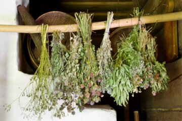 dried herbs in Mason jar on counter