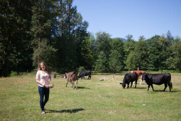 woman in pasture with cattle