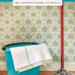 Pinterest pin on decluttering your home month by month. Image of a cleaning bucket and mop.