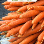Pinterest pin with an image of a huge bunch of carrots.