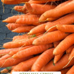 "Pinterest pin with an image of a huge bunch of carrots. Text overlay says, ""Garden Planning to 2x Your Harvest""."