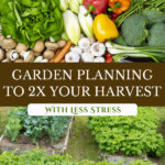 Pinterest pin with two images. First image of a huge harvest of a variety of vegetables. The second image is of a large garden with raised beds.