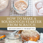 Pinterest pin with an image of sourdough starter.