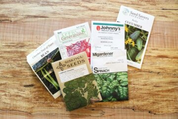 Heirloom seed packets from different companies sitting on a counter.