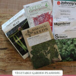 "Pinterest pin with a photo of seed packets. Text overlay says, ""What are the best seeds to buy?"""