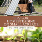 Pinterest pin with an image of a woman in a pasture on a chicken tractor, and seedlings started in small pots.