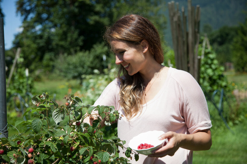 A woman in a pink shirt picking raspberries.