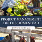 Pinterest pin for homesteading time management with an image of a woman kneeling in the garden and an image of chickens in a coop.