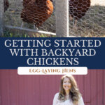 A Pinterest pin on how to raise backyard egg laying chickens with an image of chickens in a coop, and an image of a woman holding a wire basket of eggs.