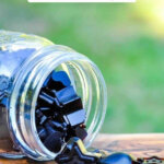 Pinterest pin for elderberry recipes with an image of elderberry gummies.