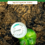Pinterest pin for beginning gardener tips with an image of a soil thermometer in the soil.
