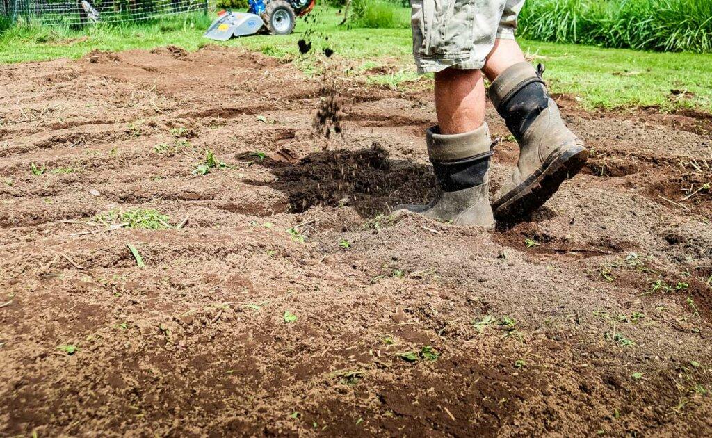 Image of feet walking through the garden adding compost over the soil.