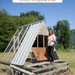 Pinterest pin for how to buy a homestead. Image of a woman gathering eggs from a chicken tractor.