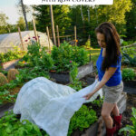 Pinterest pin for year round gardening and using covers to extend the garden season with images of a garden and row covers.