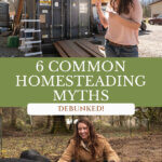 Pinterest pin about homesteading myths. Photos of a woman crouched down by pigs and a woman pointing to a shipping container.