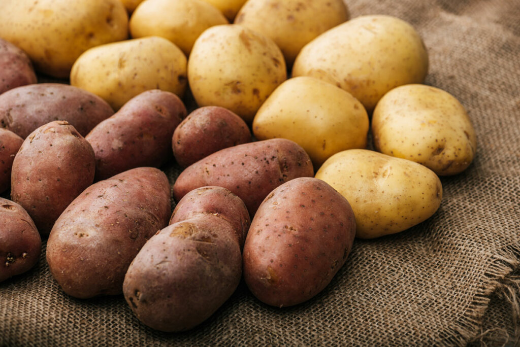 Red and yellow potatoes arranged on a burlap sack.