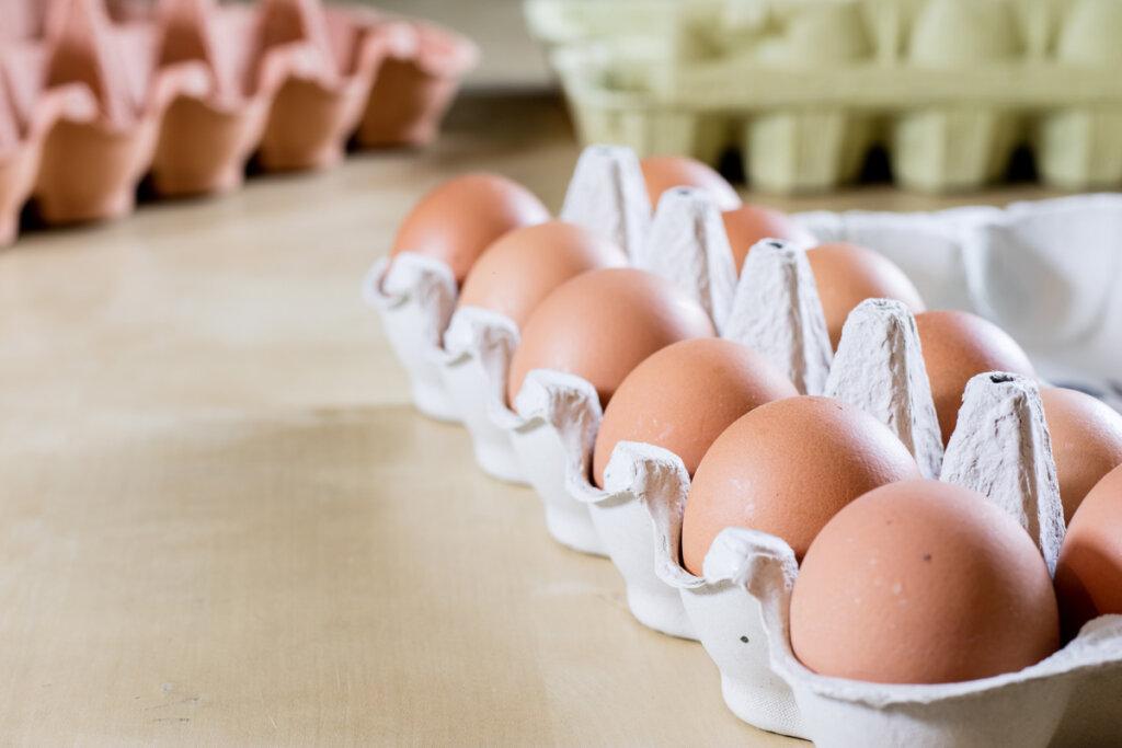 Eggs in cartons.