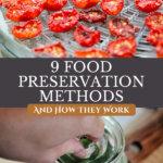 Pinterest pin for food preservation methods. Images of preserved food.