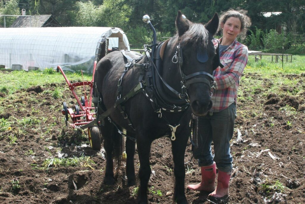 A woman using a horse drawn plow in the garden.