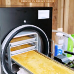 Pinterest pin for how to freeze dry eggs. Image of tray of freeze dried eggs coming out of the freeze dryer.