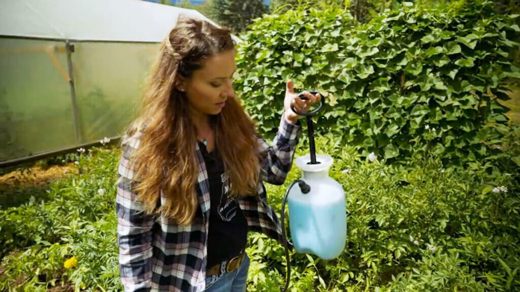A woman holding up a sprayer filled with blue copper.