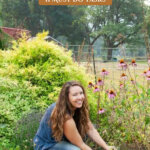 Pinterest pin for fall garden prep, image of a woman pulling out echinacea plants.