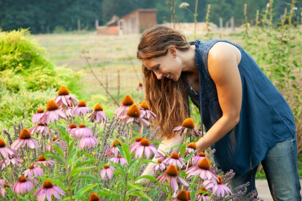 A woman bending forward amongst echinacea flowers.