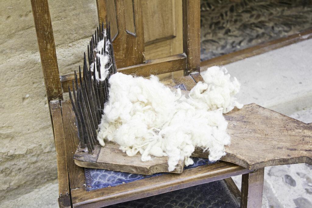 Fresh shorn fleece from a sheep.