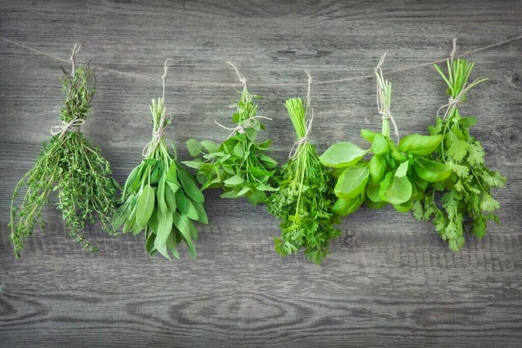 Bundles of fresh herbs tied with twine and hanging upside down to dry.