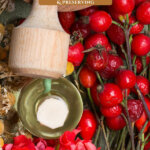 Pinterest pin on the medicinal uses for rosehips. Image of rosehips.